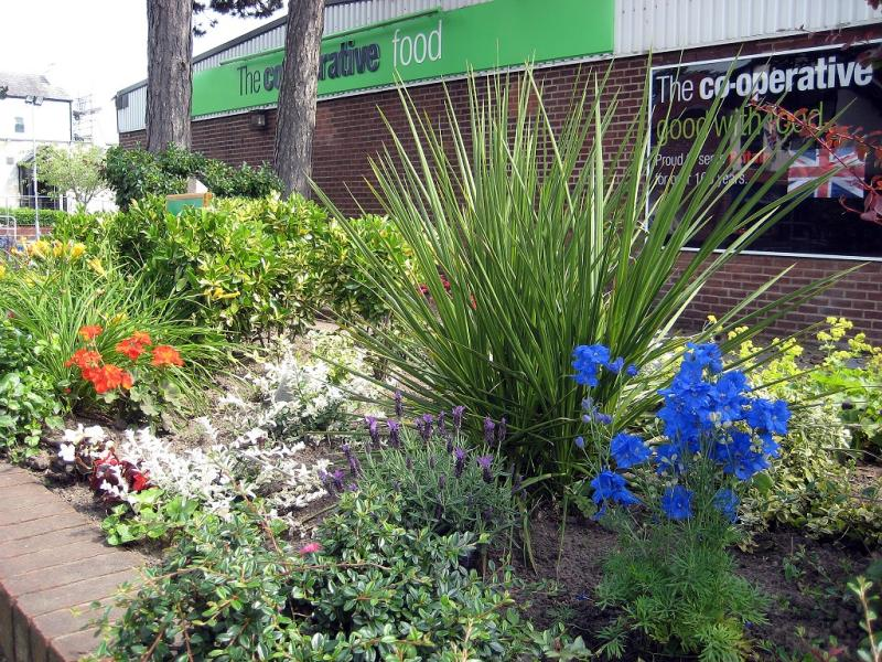 Ainsdale In Bloom