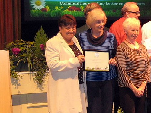 2016 Outstanding Award: Ainsdale Village Church Community Garden
